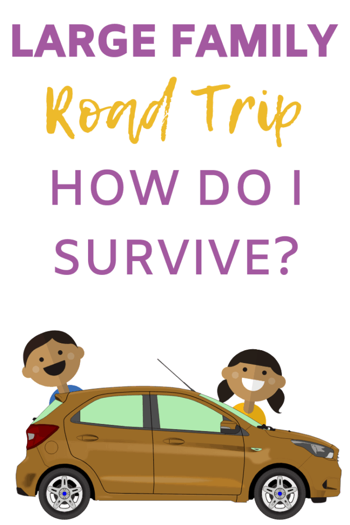 Large Family Road Trip How Do I Survive?  Road Trips with lots of kids can be scary but they don't have to make you crazy!